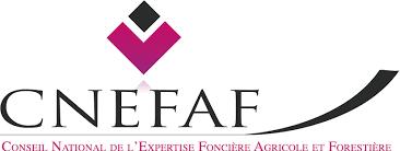 Logo CNEFAF