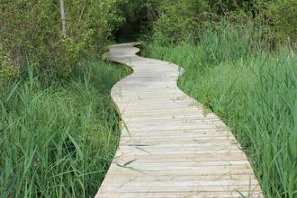 Etude préalable de faisabilité et de programmation pour la création d'un espace naturel de loisirs et d'une voie douce